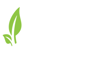 Seven grains Market